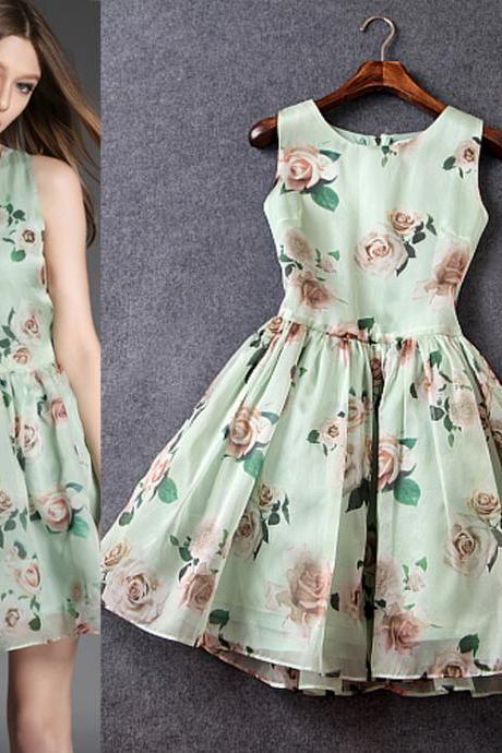 Organza Printed Sleeveless Bitter Fleabane Bitter Fleabane Dress